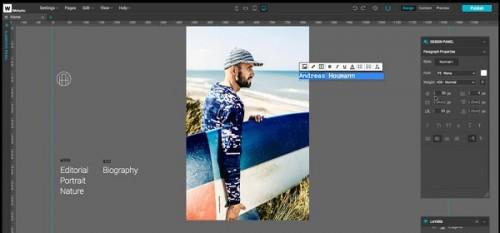 Webydo interface