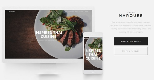 Squarespace Template Single