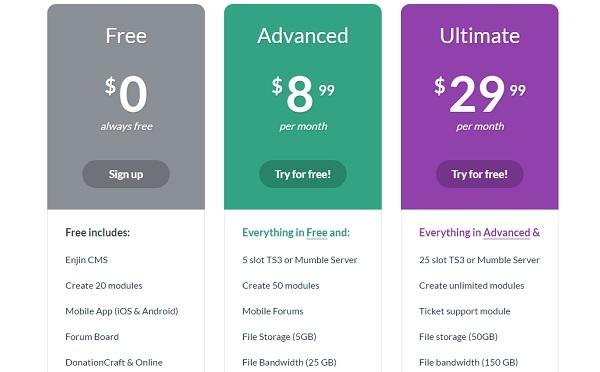 Enjin Website Builder - Pricing