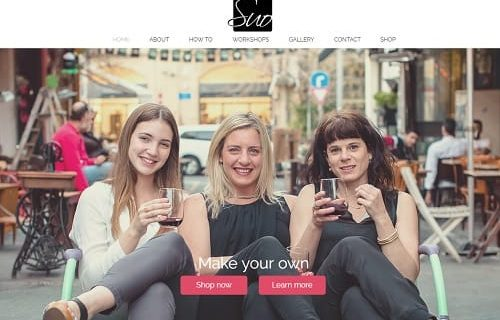 Wix Example Websites