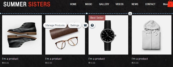 Wix Musician eCommerce