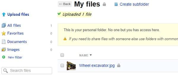 Webasyst Files
