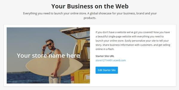 Ecwid Starter Site