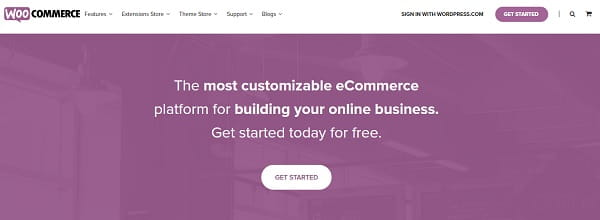WordPress Woocommerce Home Page
