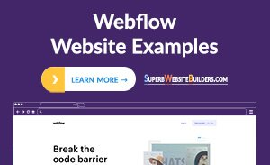 Best Webflow Website Examples