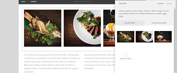 Squarespace Website Editor