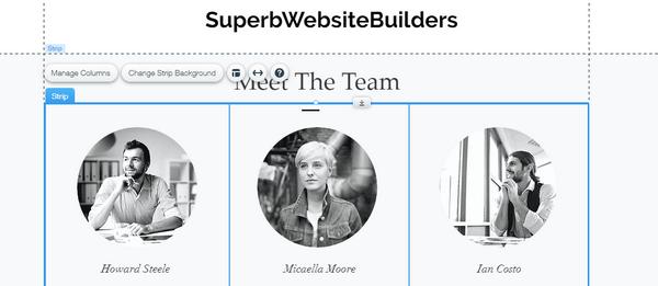 Describe your Team section