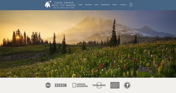 Chase Dekker Wild-Life Images