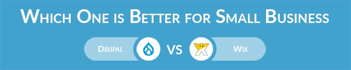 Drupal vs Wix: Which One is Better for Small Business Websites