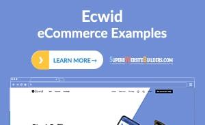 Best Ecwid Online Store Examples