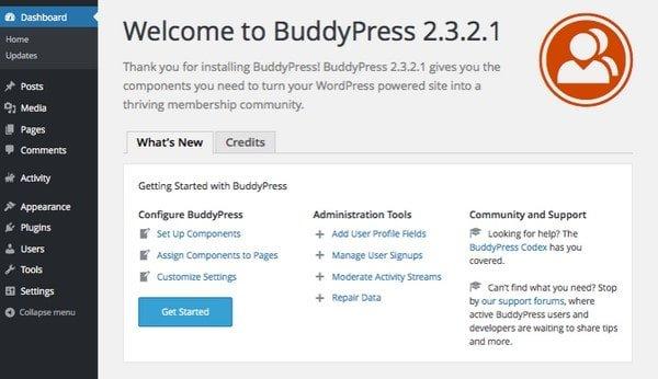 buddypress dushboard