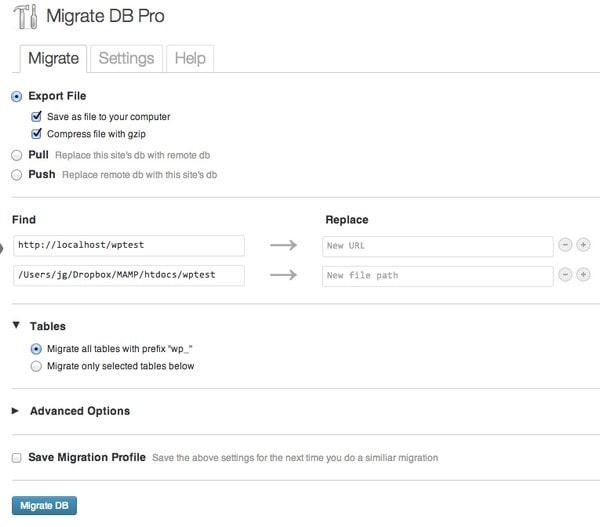 WP Migrate DB Pro Option
